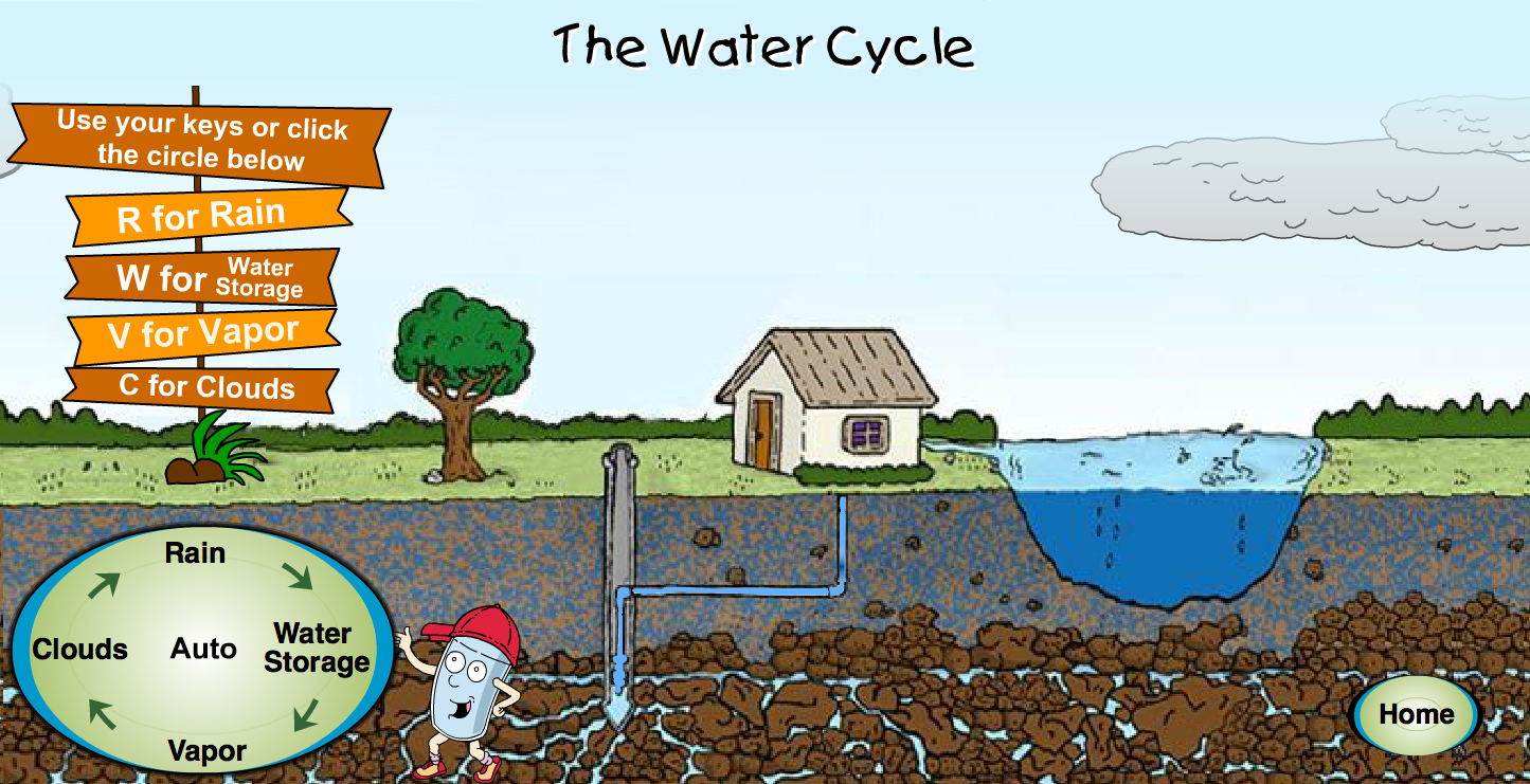 Click here to view water cycle animation