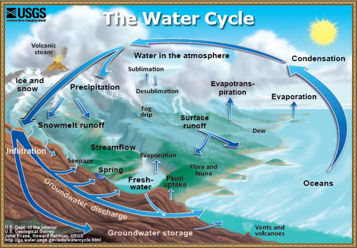 A diagram of the water cycle provided by USGS