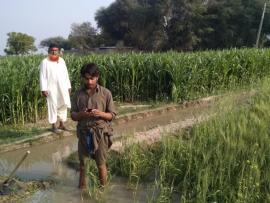 Farmers in a field in Pakistan using GPM data on their phone.