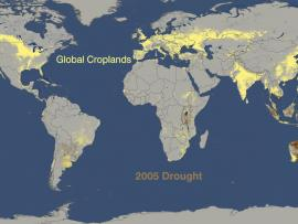 World Droughts From 2005 to 2009 Versus Where Crops are Grown