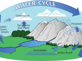 ... additionally Water Cycle as well Water Cycle. on water cycle diagram