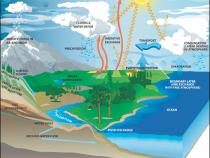 Diagram of the water cycle from NASA Earth Science