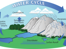 Water Cycle Speaker's Toolkit