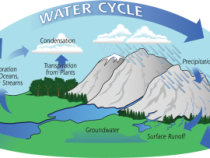 Exploring the Water Cycle
