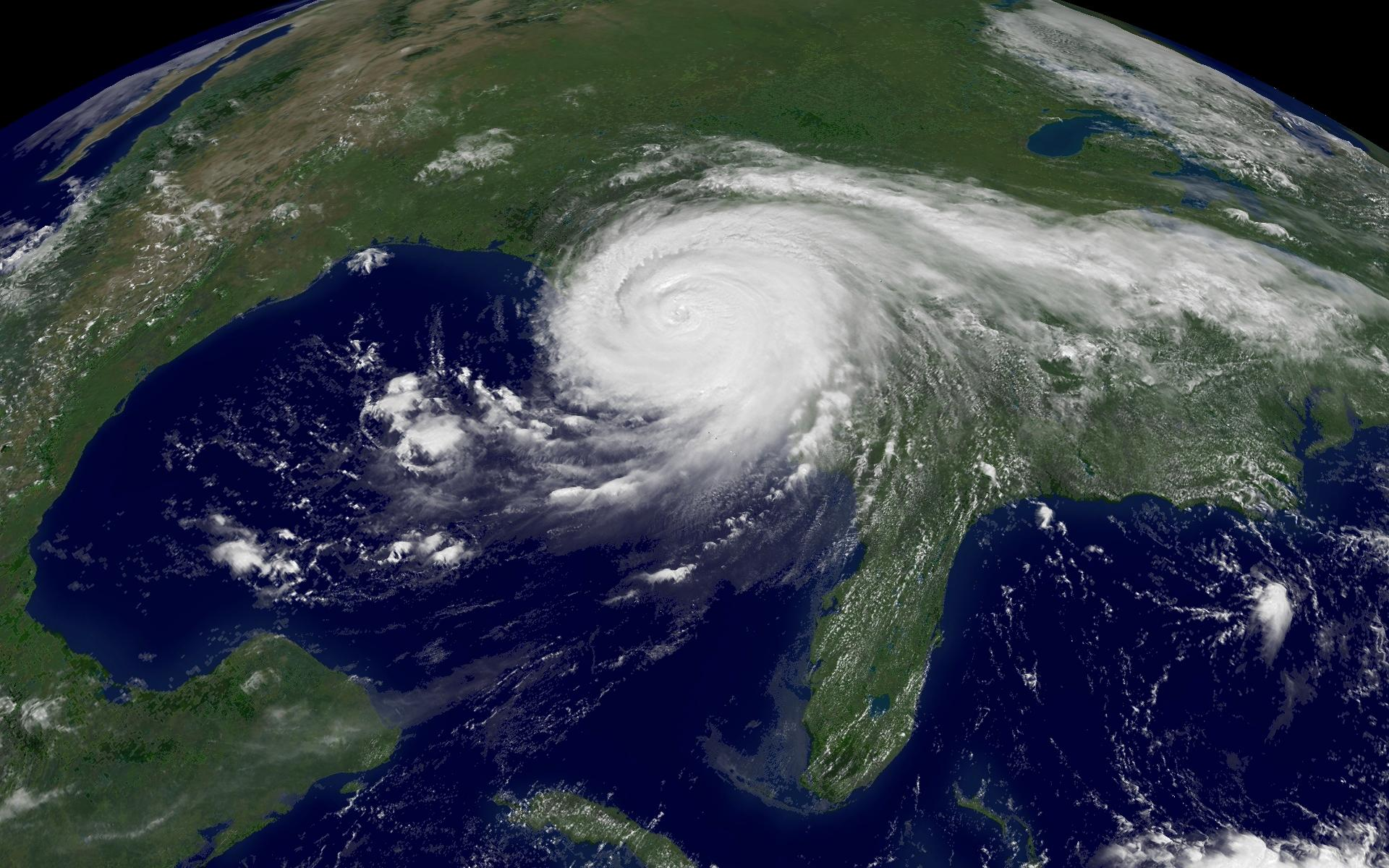 term papers on hurricane katrina