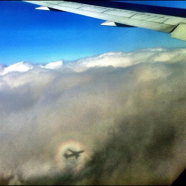 Brocken Spectre from the Air, by Andrew Moore