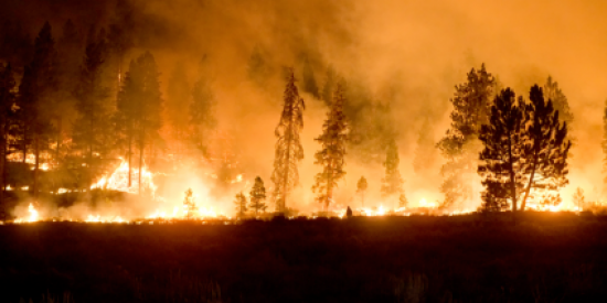 Wildfires in the Western U.S.