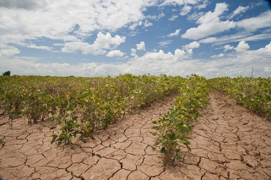Drought Example