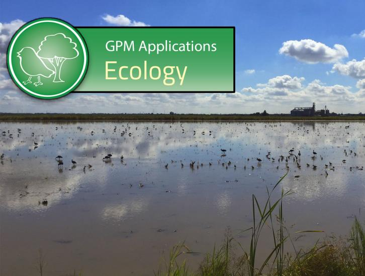GPM Applications: Ecology
