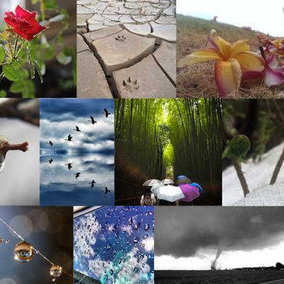 "GPM ""Signs of Spring"" Photo Contest Winners"