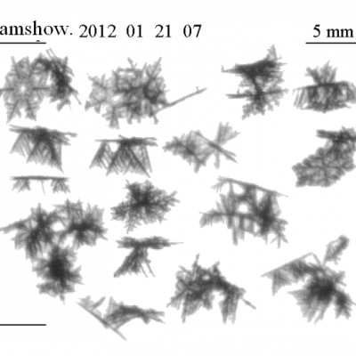 Snowflake images in black and white taken by the Snow Video Imager